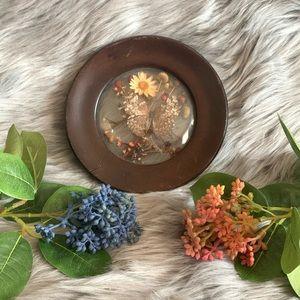 Vtg round butterfly taxidermy & flowers framed art
